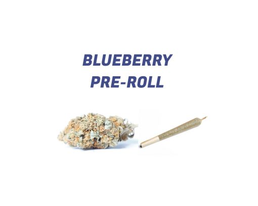 Blueberry Pre-Roll