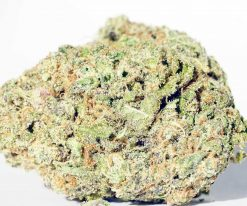 unicorn poop hybrid cannabis strain for sale
