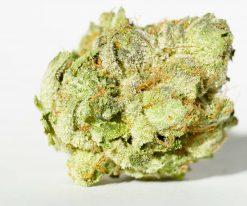 white death indica cannabis strain for sale
