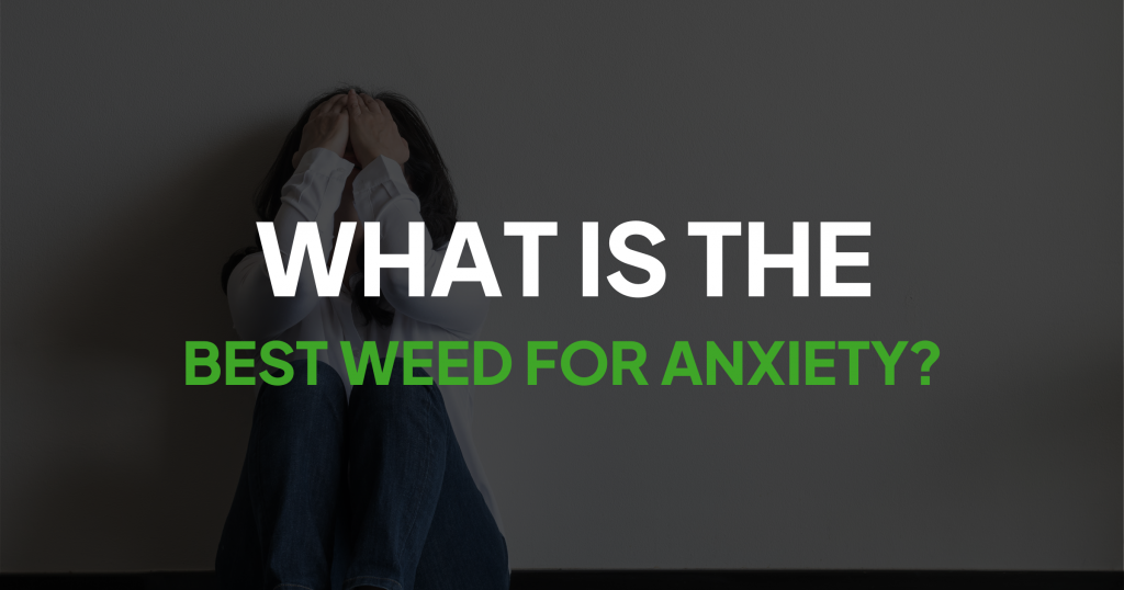 What is the Best Weed For Anxiety?