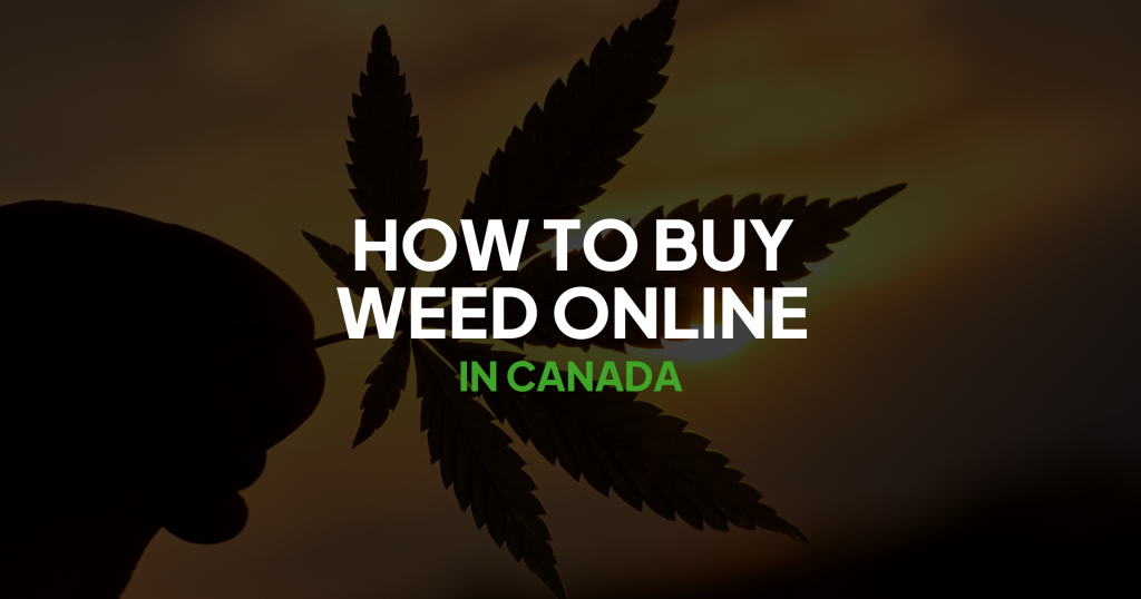 How to Buy Weed Online in Canada Banner