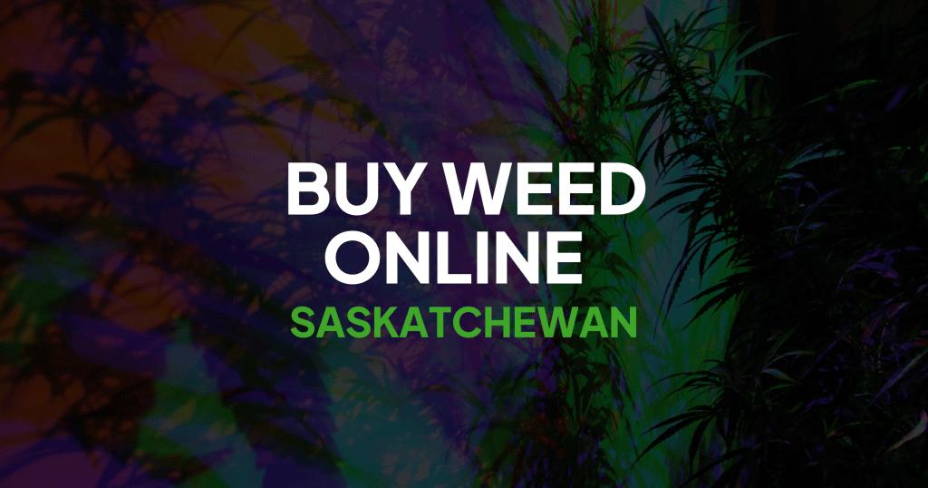 Buy Weed Online Saskatchewan