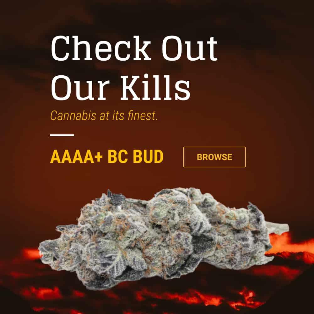 AAAA+ Cannabis Strains