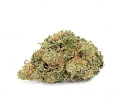 Frosted Fruit Cake Strain