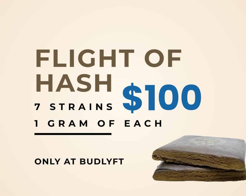 Flight of Hash